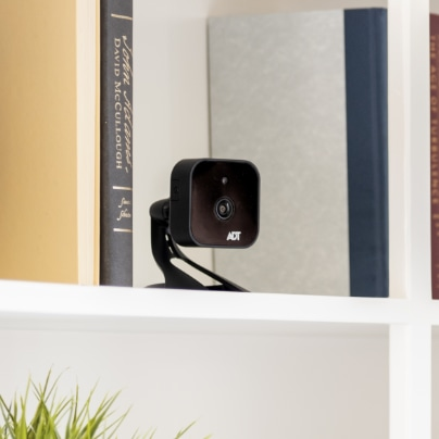 Lincoln indoor security camera